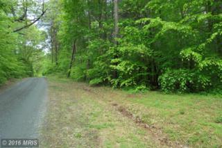 Carly Lane, Ruckersville, VA 22968 (#GR9647523) :: Pearson Smith Realty