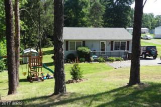795 Matthew Mill Road, Ruckersville, VA 22968 (#GR9875103) :: Pearson Smith Realty