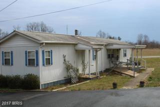 9649 Spotswood Trail, Stanardsville, VA 22973 (#GR9897954) :: Pearson Smith Realty
