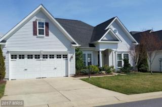 24 John Rucker Drive, Ruckersville, VA 22968 (#GR9946434) :: Pearson Smith Realty