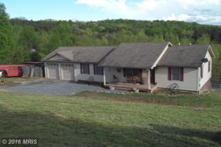 120 Kansas Drive E, Maysville, WV 26833 (#GT9647628) :: Pearson Smith Realty
