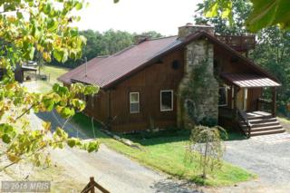 1754 Outlaw Trail, Maysville, WV 26833 (#GT9762195) :: Pearson Smith Realty