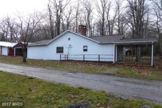 77 Alpine Way, Mount Storm, WV 26739 (#GT9886792) :: Pearson Smith Realty