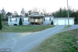 4024 South Mill Creek Road, Dorcas, WV 26847 (#GT9895557) :: LoCoMusings