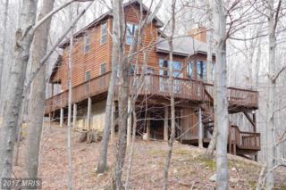 3498 Preserve Road, Maysville, WV 26833 (#GT9897252) :: LoCoMusings