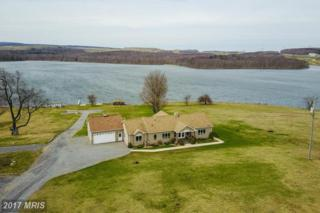 75 Mountain Lake Drive, Mount Storm, WV 26739 (#GT9913159) :: Pearson Smith Realty