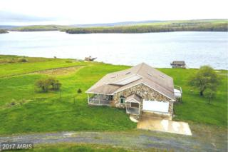 77 Mountain Lake Drive, Mount Storm, WV 26739 (#GT9946955) :: Pearson Smith Realty