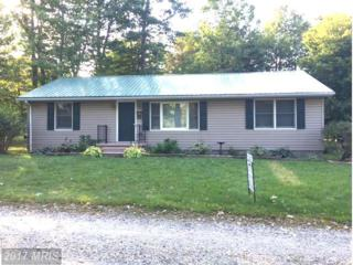 147 Alpine Way, Mount Storm, WV 26739 (#GT9948515) :: Pearson Smith Realty
