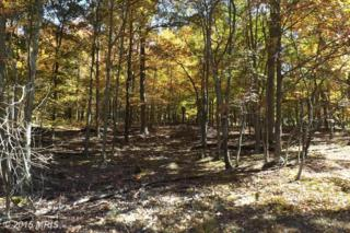 Timber Trail, Moorefield, WV 26836 (#HD9517154) :: Pearson Smith Realty