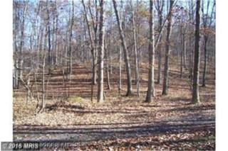18 Cedar Tree Lane, Moorefield, WV 26836 (#HD9618171) :: Pearson Smith Realty