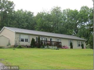 12176 Route 55, Baker, WV 26801 (#HD9795766) :: Pearson Smith Realty