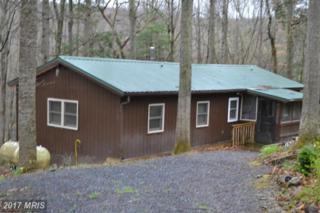389 Wild Turkey Ridge, Lost River, WV 26810 (#HD9908459) :: Pearson Smith Realty