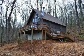 246 Hunter's Ridge, Lost River, WV 26810 (#HD9908521) :: Pearson Smith Realty