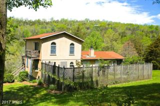 774 Whispering Pines Way, Lost River, WV 26810 (#HD9919385) :: Pearson Smith Realty