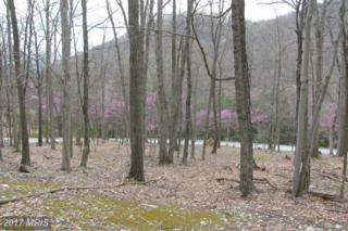 Settlers Valley Way, Lost River, WV 26810 (#HD9920265) :: Pearson Smith Realty