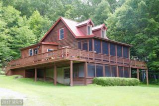453 Meadow Lane, Lost River, WV 26810 (#HD9935490) :: Pearson Smith Realty