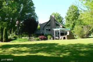 390 Silver River Acres Road, Moorefield, WV 26836 (#HD9956177) :: Pearson Smith Realty