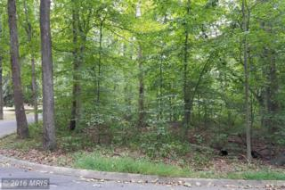 209 Woodland Drive, Bel Air, MD 21014 (#HR9768392) :: Pearson Smith Realty