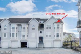 245 Blue Bill Lane C, Havre De Grace, MD 21078 (#HR9860490) :: Pearson Smith Realty