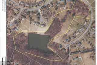0 Twin Lakes Drive, Jarrettsville, MD 21084 (#HR9870956) :: LoCoMusings