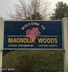 2005 Magnolia Woods Court G, Edgewood, MD 21040 (#HR9882824) :: LoCoMusings