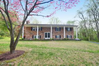 3223 Sandy Hook Road, Street, MD 21154 (#HR9923791) :: Pearson Smith Realty