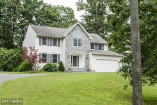 5006 Saint Pauls Church Road, Pylesville, MD 21132 (#HR9934957) :: Pearson Smith Realty