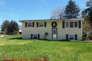 2309 Perry Avenue, Edgewood, MD 21040 (#HR9946552) :: Pearson Smith Realty