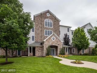 4800 Water Park Drive K, Belcamp, MD 21017 (#HR9958594) :: Pearson Smith Realty