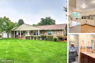 1319 Terry Way, Fallston, MD 21047 (#HR9958834) :: Pearson Smith Realty