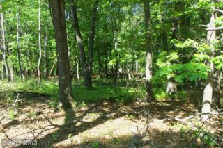 Cabin Road Road, Augusta, WV 26704 (#HS8637669) :: Pearson Smith Realty
