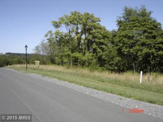 30 Harvest Drive, Romney, WV 26757 (#HS8660590) :: LoCoMusings