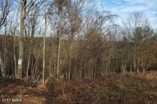 LOT 10 Olympic Drive, Augusta, WV 26704 (#HS8749142) :: Pearson Smith Realty