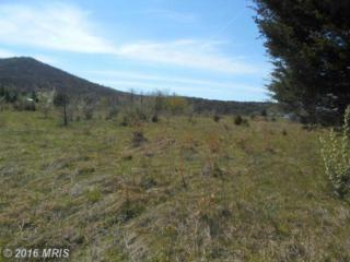 Off North Texas Rd-Rt, Augusta, WV 26704 (#HS9635383) :: Pearson Smith Realty