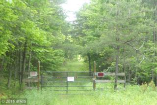 1748 Delray Heights Circle, Delray, WV 26714 (#HS9670350) :: Pearson Smith Realty