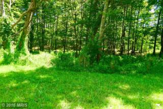 LOT 14 Falcon View Drive, Capon Bridge, WV 26711 (#HS9723638) :: Pearson Smith Realty