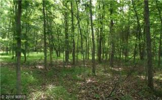 Mountain River Way, Levels, WV 25431 (#HS9730590) :: Pearson Smith Realty