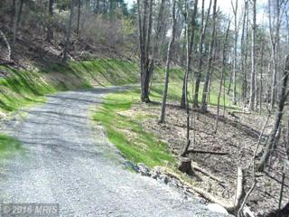 Deep Run Hollow Road, Delray, WV 26714 (#HS9768505) :: Pearson Smith Realty