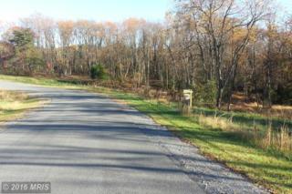 Harvest Drive, Romney, WV 26757 (#HS9787843) :: LoCoMusings