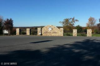 Harvest Drive, Romney, WV 26757 (#HS9787851) :: LoCoMusings