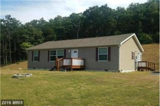 311 311 WATSON SCHOOL Road, Shanks, WV 26761 (#HS9814120) :: Pearson Smith Realty