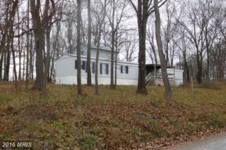 140 Potter, Romney, WV 26757 (#HS9821442) :: Pearson Smith Realty