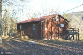 319 Overlook Drive, Delray, WV 26714 (#HS9834802) :: Pearson Smith Realty
