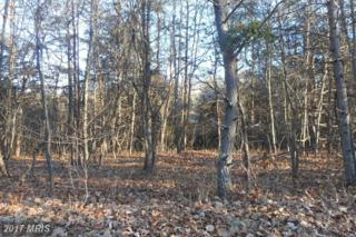 Alonzo Lane, Augusta, WV 26704 (#HS9835357) :: Pearson Smith Realty