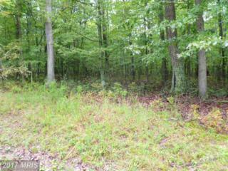 8-A Owl Hollow Rd, Slanesville, WV 25444 (#HS9839002) :: LoCoMusings