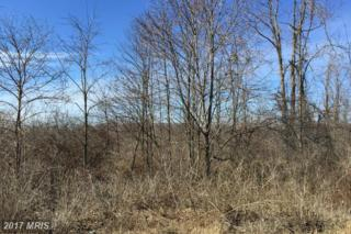 Off Of Old Jersey Mtn Road, Romney, WV 26757 (#HS9843335) :: Pearson Smith Realty
