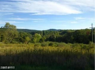 Stoney Mountain Overlook, Romney, WV 26757 (#HS9846962) :: LoCoMusings