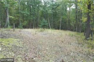 36 Whispering Pines Road, Slanesville, WV 25444 (#HS9882409) :: Pearson Smith Realty