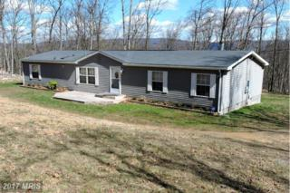 287 Falconwood Road, Bloomery, WV 26817 (#HS9912670) :: Pearson Smith Realty