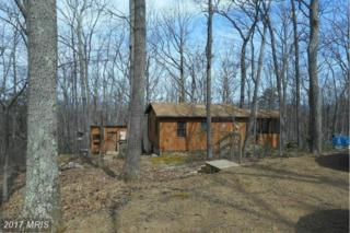 823 Wild Boar Road, Augusta, WV 26704 (#HS9915573) :: Pearson Smith Realty